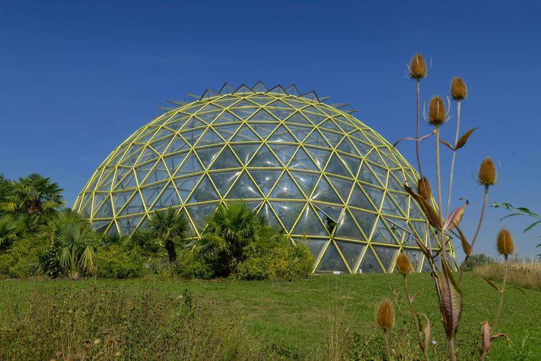 Das eindrucksvolle Kuppelgewächshaus im Botanischen Garten in Düsseldorf.