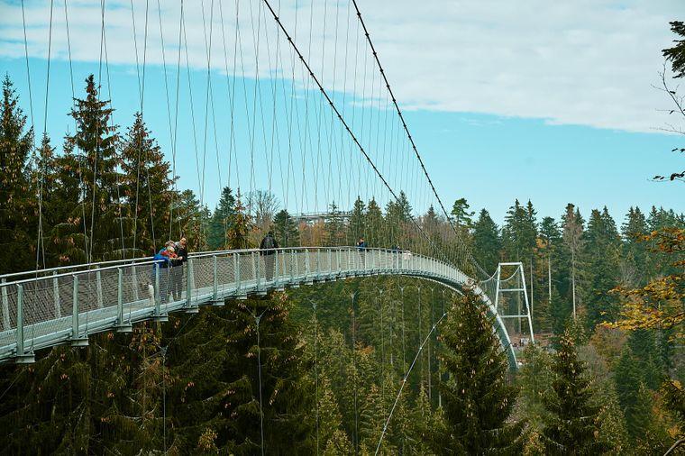 Die Hängeseilbrücke macht einen Buckel nach oben – als einzige in Europa!