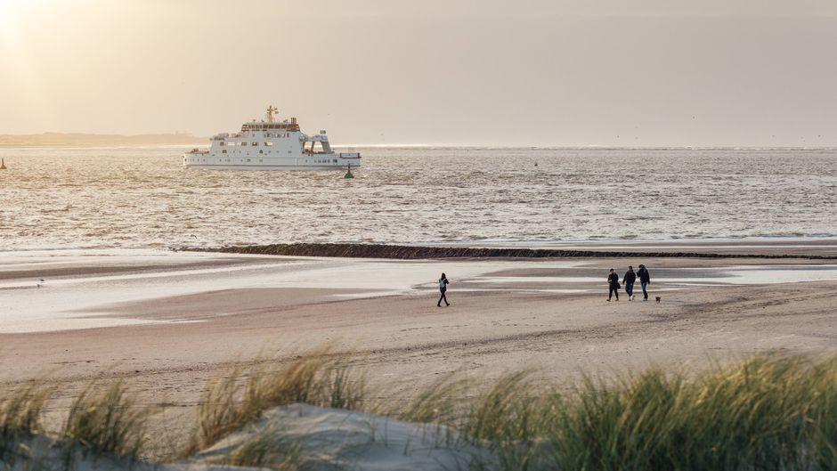Tipps für Ausflüge an die Nordsee abseits von Menschenmassen.