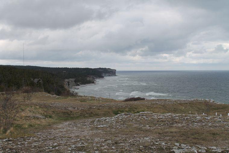 Steilküste Högklint im Süden von Visby auf Gotland.