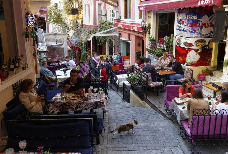 Eine Straßenkatze in der Istanbuler Fußgängerzone.