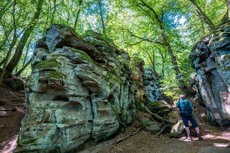 Die Teufelsschlucht ist eine enge, begehbare Schlucht aus Sandsteinfelsen im Naturpark Südeifel.