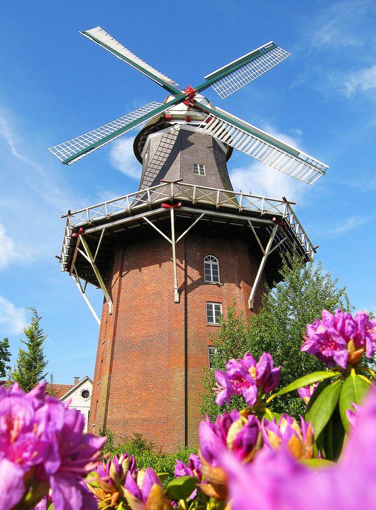 Der zweithöchsten Mühle Deutschlands in der Nahe der Vareler Innenstadt musst du auf deiner Sightseeing-Tour durch Varel unbedingt einen Besuch abstatten.