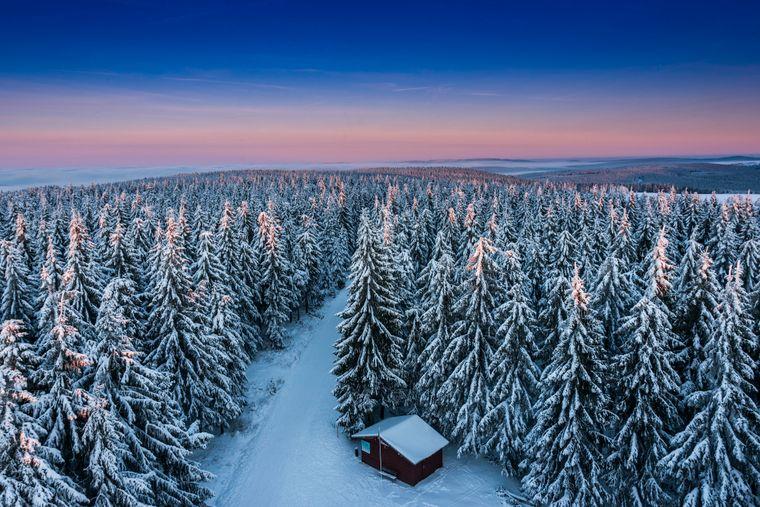 Im Thüringer Wald lohnt es sich auch im Winter, zur Werraquelle zu laufen. Achtung: Auf der Strecke sind auch Pferdekutschen unterwegs.