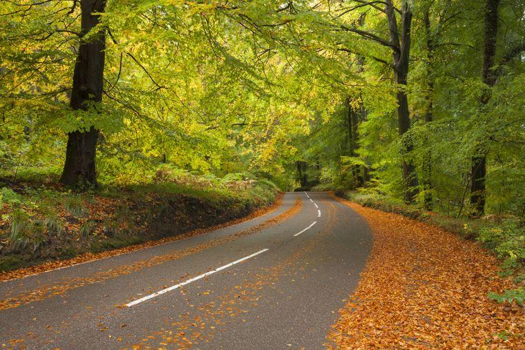 Landstraße im Wye Valley, Wales.