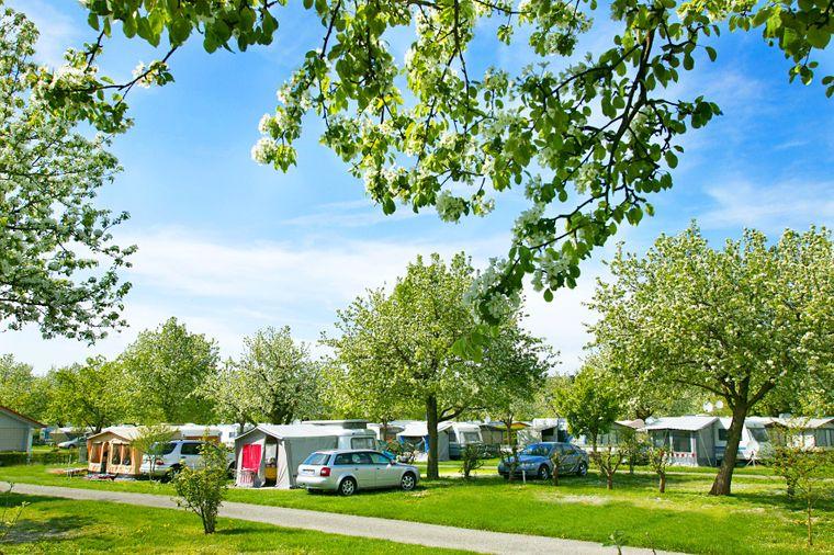 Der Campingplatz Wirthshof bei-Markdorf befindet sich in der Nähe des Bodensees.