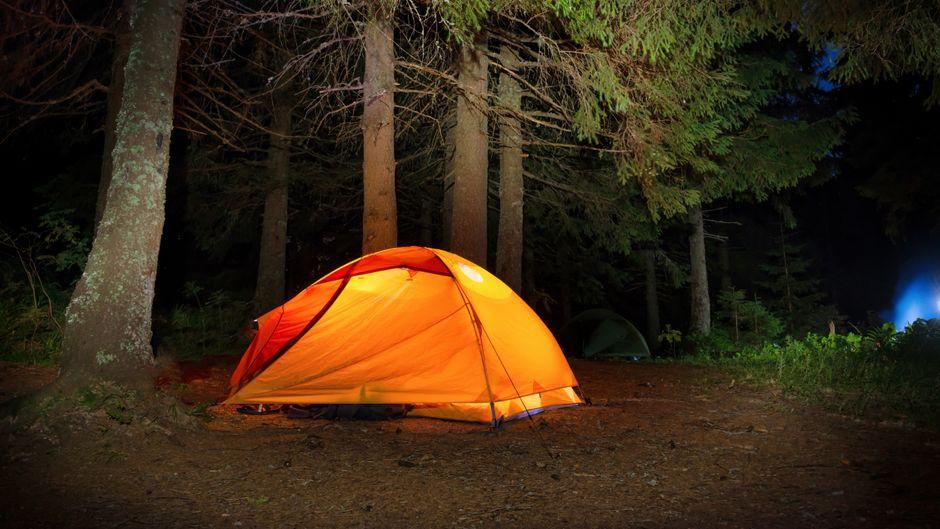 In 425 Waldgebieten in Polen dürfen Wildcamper ihre Zelte aufschlagen. (Symbolfoto)