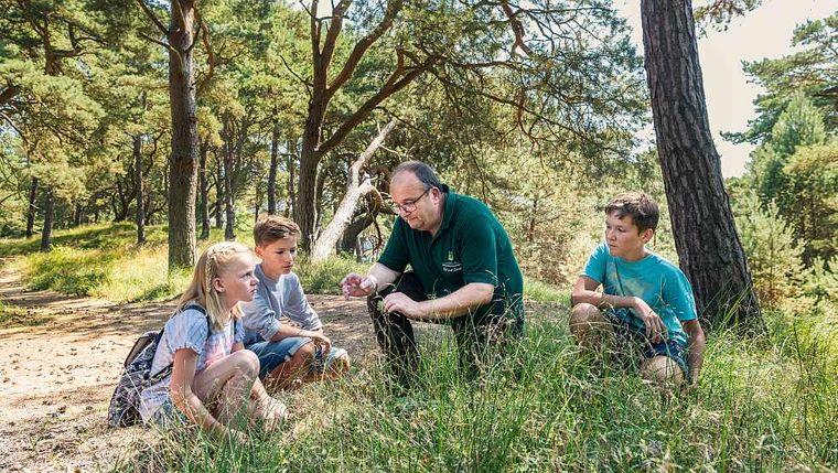 Wildlife Usedom