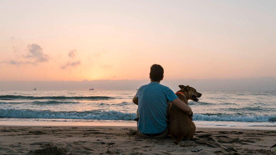 Ein Mann sitzt mit seinem Hund während des Sonnenuntergangs am Strand.