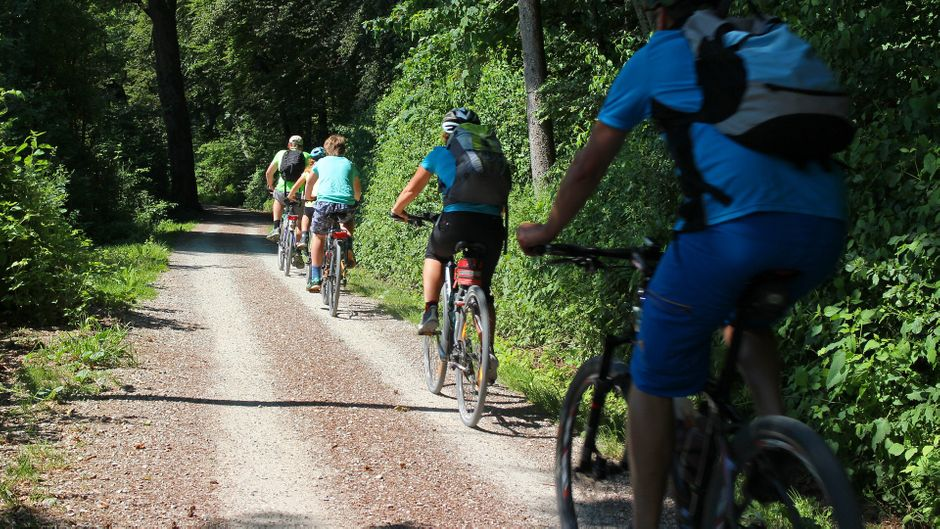 Eine Radtour quer durch Brandenburg. Diese Route führt quer durch die Wälder. Entdecke bunte Landschaften und tauche in die Natur ein.