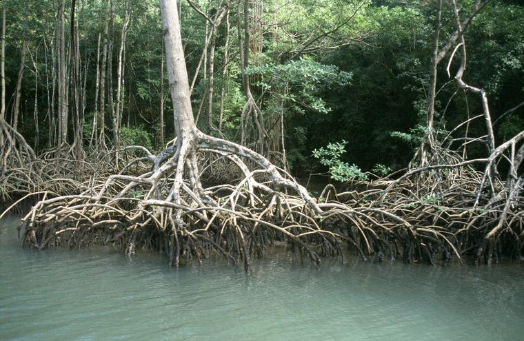 Dominikanische Republik, Los-Haitides-Nationalpark