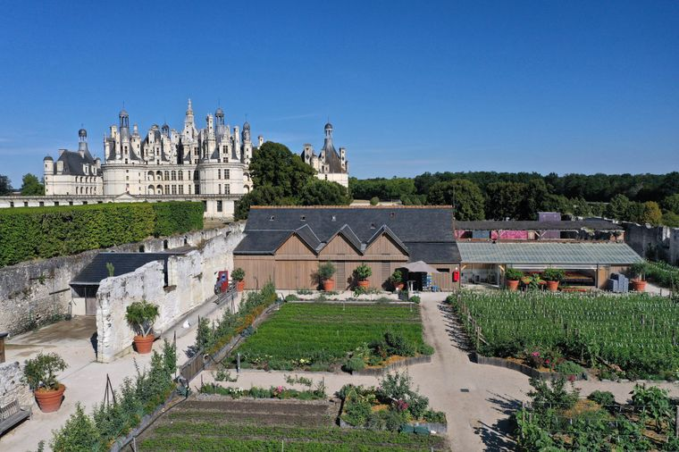Alles bio: Auf den riesigen Ländereien des Château de Chambord wird heute Gemüse angebaut, das an Restaurants in der Gegend und Schlossbesucherinnen und ‑besucher verkauft wird.