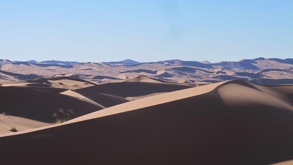 Die Namib ist die älteste Wüste der Welt.