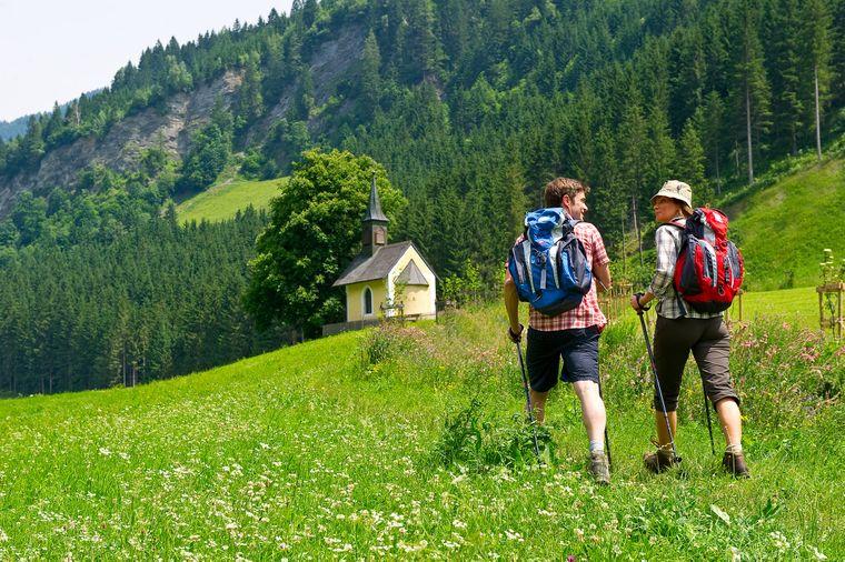 Viele der Wanderwege im Großarltal führen zu einer der etwa 40 bewirtschafteten Almen.