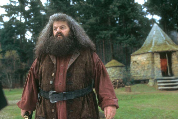 """Szene aus dem Film """"Harry Potter und der Stein der Weisen""""."""