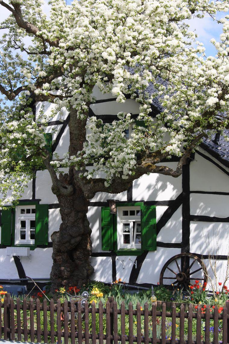 Die Dörferblick-Schleife führt durch die Gemeinde Pomster mit ihren sehenswerten Fachwerkhäusern.