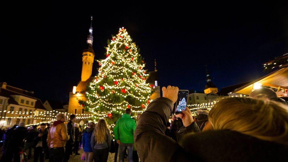 Eine Besucherin auf dem Weihnachtsmarkt in Tallinn macht ein Handyfoto vom geschmückten Weihnachtsbaum.