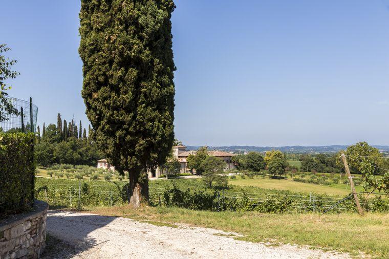 Der Radweg auf der Weinstraße am Gardasee führt auch nach San Martino della Battaglia.