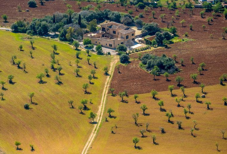 Eine Finca in der Nähe von Palma zwischen Olivenfeldern und Mandelbäumen.