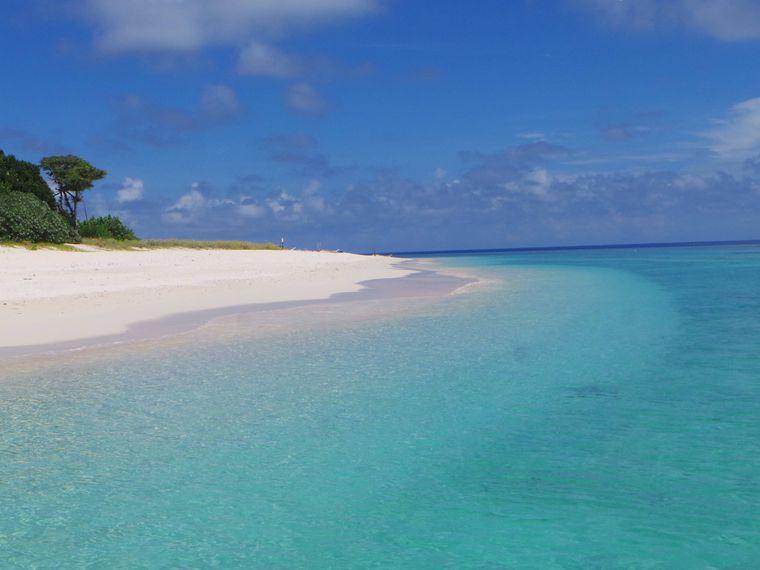 Wer zum Tauchen nach Boracay wollte, ist im Apo Reef Natural Park gut aufgehoben. Er besteht aus drei kleinen Inseln, vor deren Küsten unzählige Fische durch bunte Korallenriffe schwimmen.