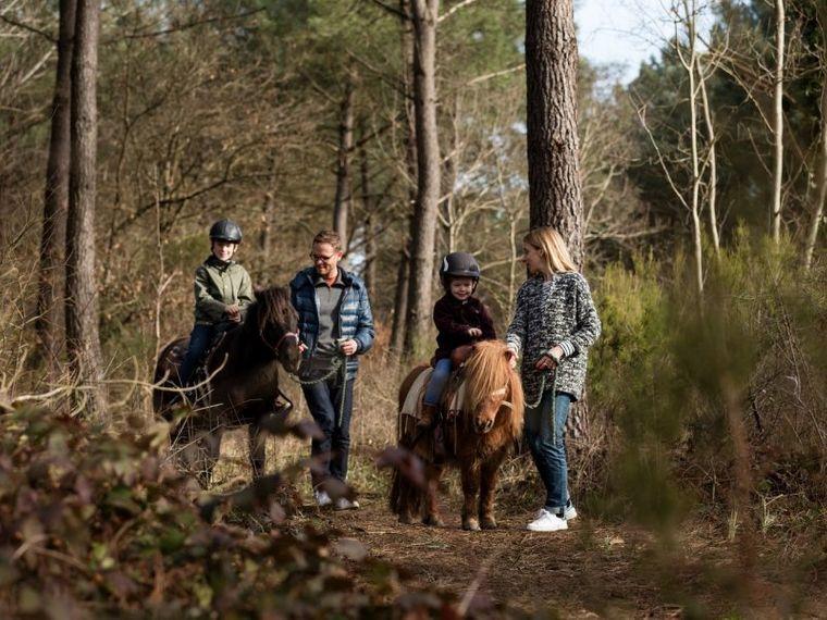 Ponyausritt mit den Kindern im Wald