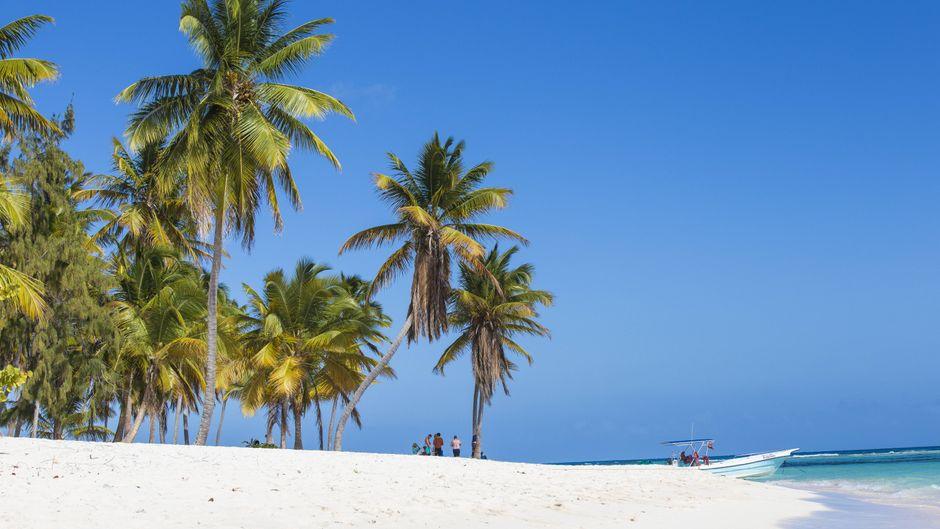 Der Canto de la Playa hat alles, was ein Traumstrand braucht? Warte, bis du Platz eins siehst.