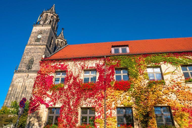 Dom von Magdeburg im Herbstkleid.