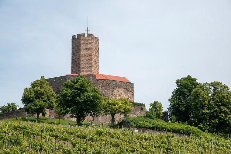 Blick auf die Burg Steinsberg