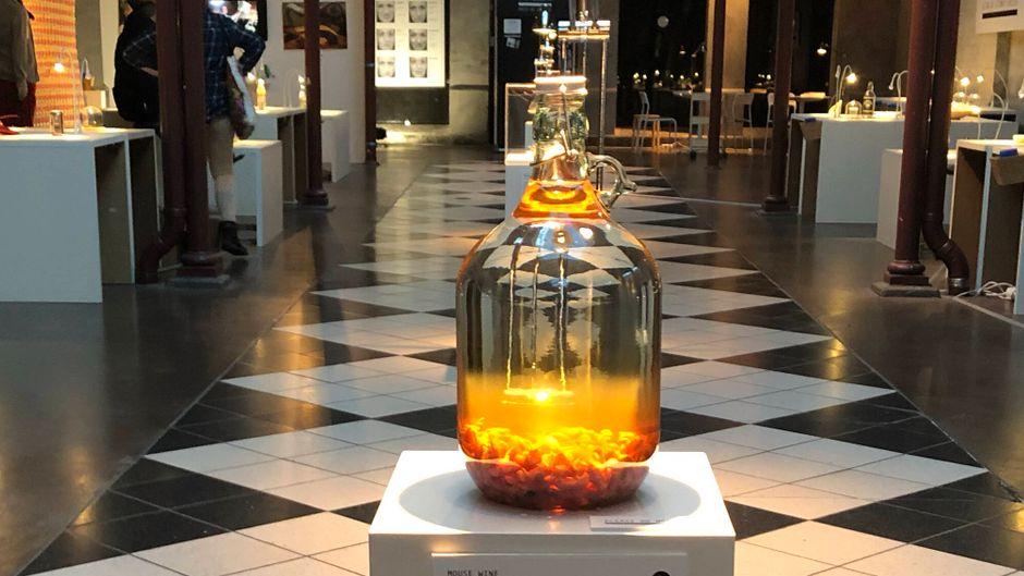 Eines der Exponate des Museums: Su Callu Sardu. Bei der sardischen Spezialität handelt es sich um den Magen einer Babyziege, der mit Muttermilch gefüllt wird, eines der harmloseren Exponate übrigens.