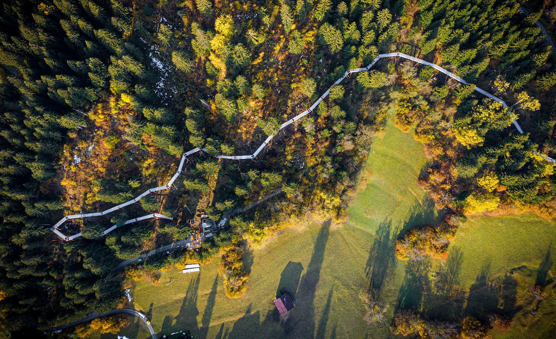 Schweiz: Längster Baumwipfelpfad der Welt eröffnet