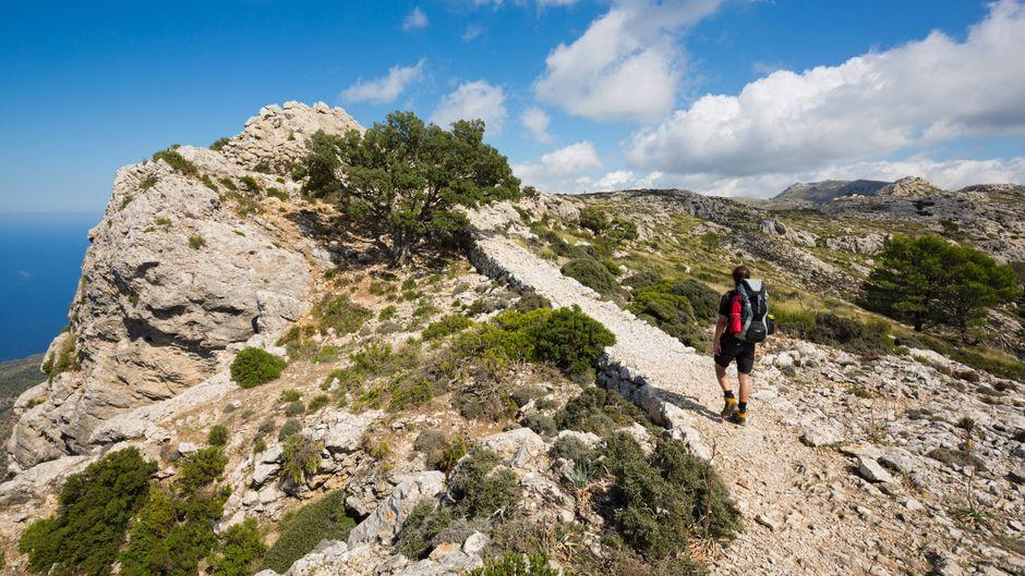 Die Serra de Tramuntana lädt zu kurzen oder langen Wanderungen ein, wenn du eine Auszeit vom Strand-Alltag suchst.