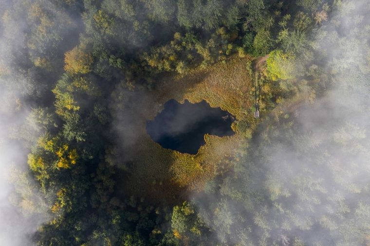 """Der """"Grundlose Kolk"""" ist ein kleines Moor im Möllner Wildpark."""