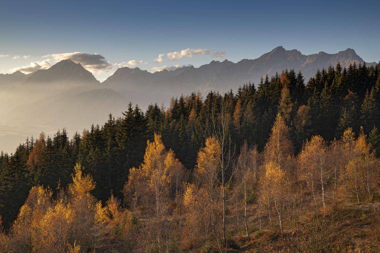 Das Bunt der Birken und Lärchen steht im Kontrast zu den dunklen Fichten im Karwendel-Gebirge.