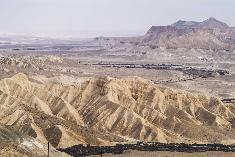 Die Zin-Wüste ist eine Steinwüste in Israel. Sie ist Teil der Wüste Negev, die rund 12.000 Quadratkilometer groß ist und sich von Beerscheba im Norden bis nach Eilat im Süden erstreckt.