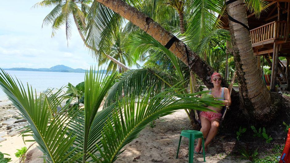 Leo sitzt unter einer großen Palme am weißen Strand am Meer