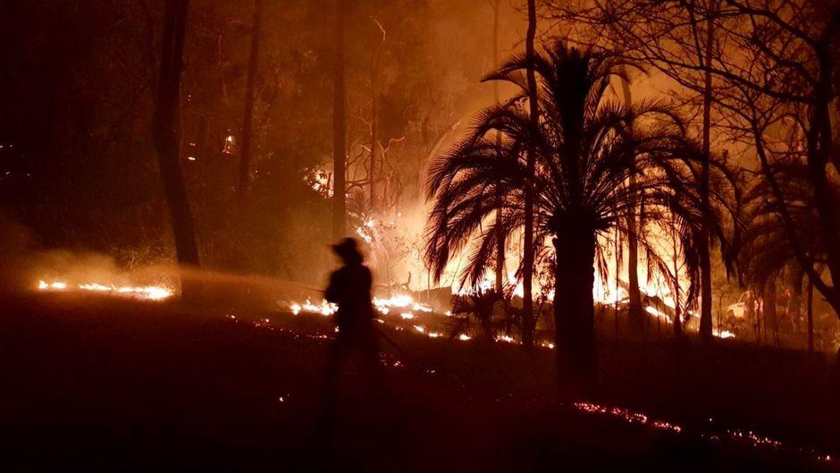 Feuerwehrmann löscht ein Buschfeuer in Queensland.