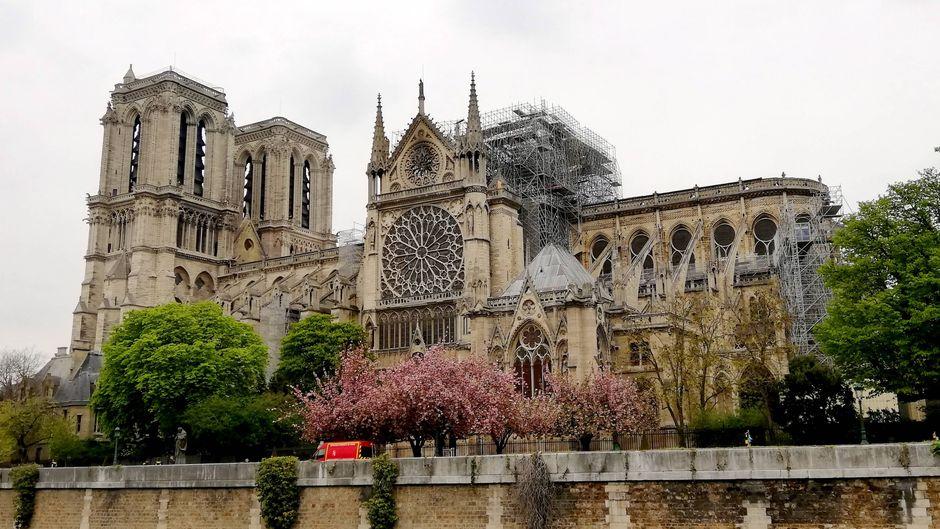 Notre-Dame am Tag nach dem verheerenden Brand. Die Grundmauern und die zwei großen Türme konnten gerettet werden.