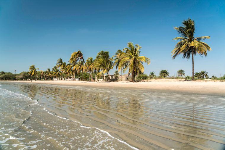 Palmenstrand von Sanyan im westafrikanischen Gambia.