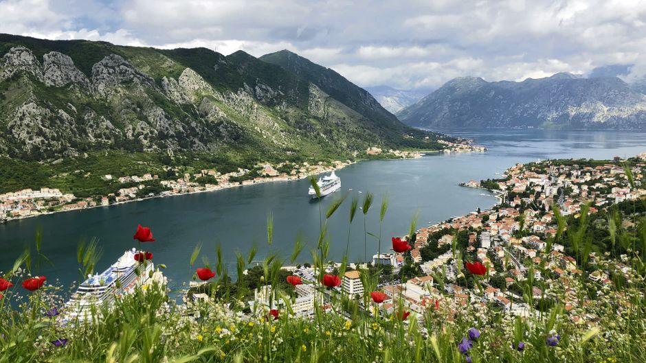 Von der Festung Sveti Ivan hoch über der Stadt Kotor bietet sich ein beeindruckender Blick auf die Bucht.