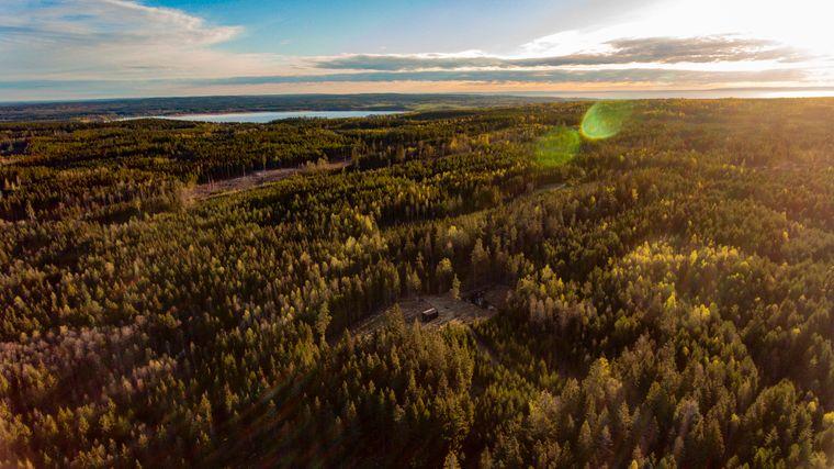 Luftaufnahme eines Waldstückes am Vätternsee mit einem kleinen Tiny House.