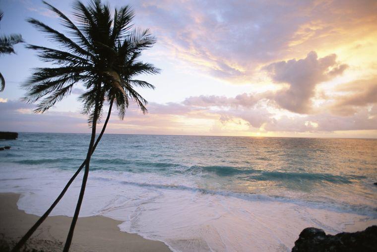 Ein Strand auf der Insel Barbados bei Sonnenuntergang.