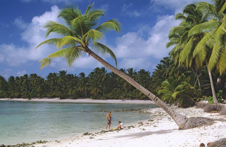 Idylle unter Palmen – willkommen auf den Kokosinseln.