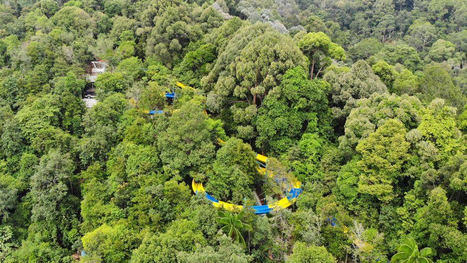 Auf einer Länge von mehr als einem Kilometer schlängelt sich die Wasserrutsche durch einen Wald bei Penang, Malaysia.