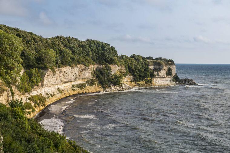 Wer Fossilien sucht, ist hier richtig: An der Steilküste Stevns Klint in Dänemark.
