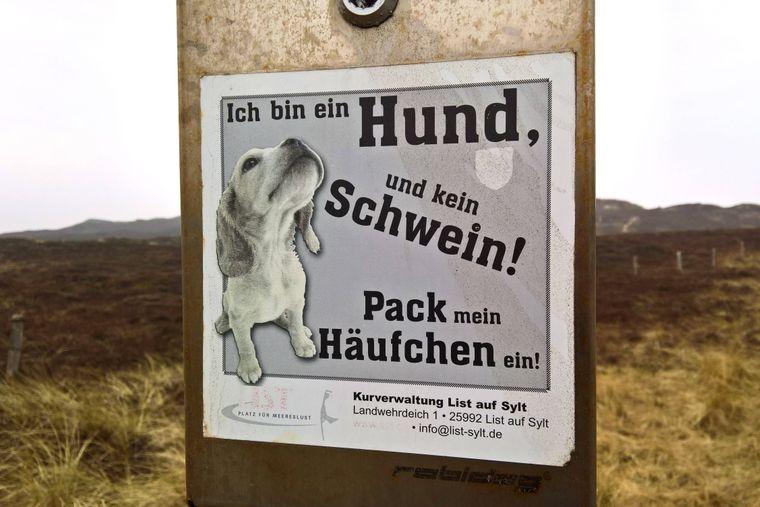 Ein Schild in den Dünen auf Sylt mahnt Hundehalter zur Sauberkeit.