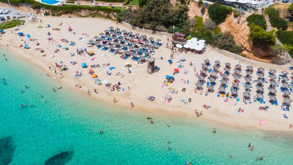 Mallorca-Urlauber könnten künftig von einheitlichen EU-Hygienestandards profitieren.