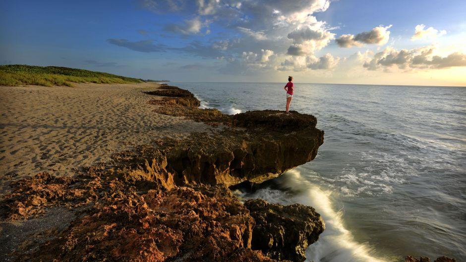 Entdecke die Natur im Sunshine State Florida