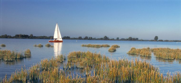 Winterliches Flair am Dümmer in Niedersachsen. Im Sommer eignet sich das Gewässer auch hervorragend zum Schwimmen.