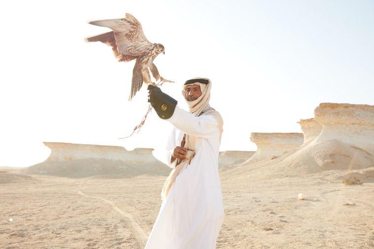 Falknerei in Qatar.