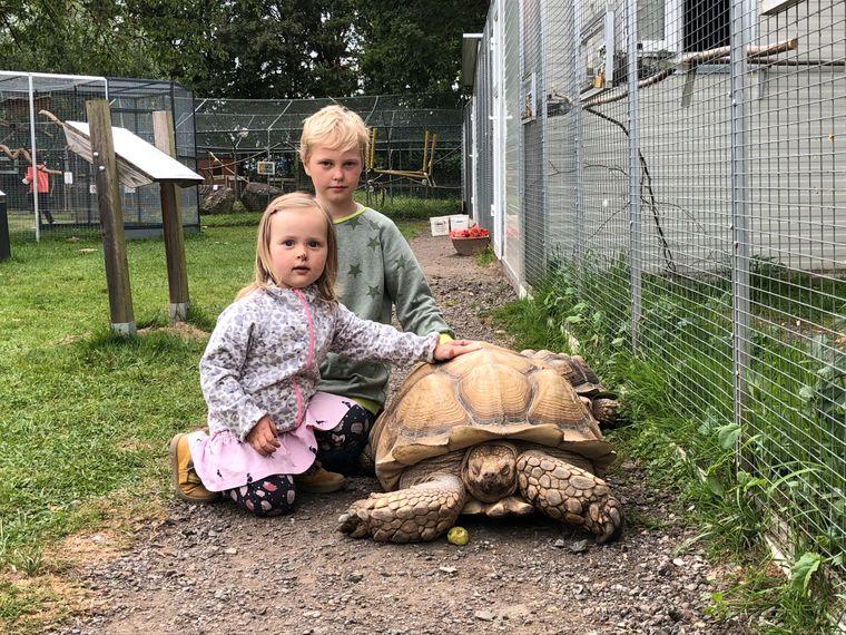 Die Kinder sind beeindruckt von den Tieren!